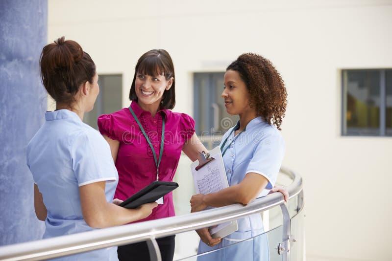 Kvinnlig konsulent Meeting With Nurses som använder den Digital minnestavlan arkivbild