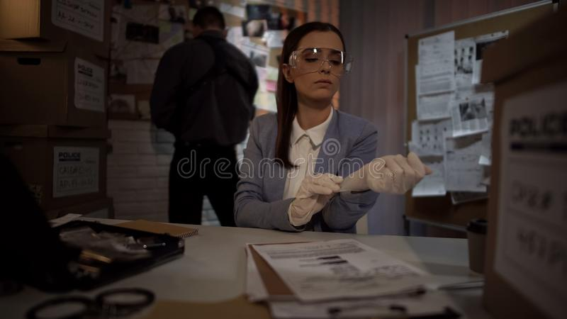 Kvinnlig kriminolog som sätter på handskar för att undersöka tecken, yrkesmässig expertis royaltyfri bild
