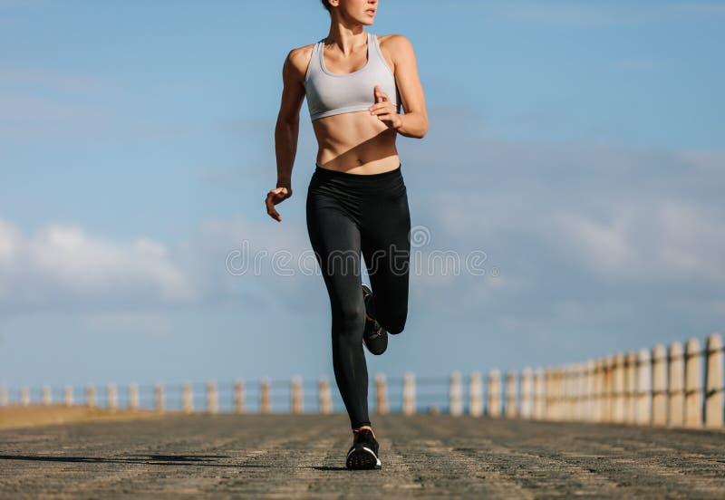 Kvinnlig löpare som utarbetar i morgonen arkivbilder
