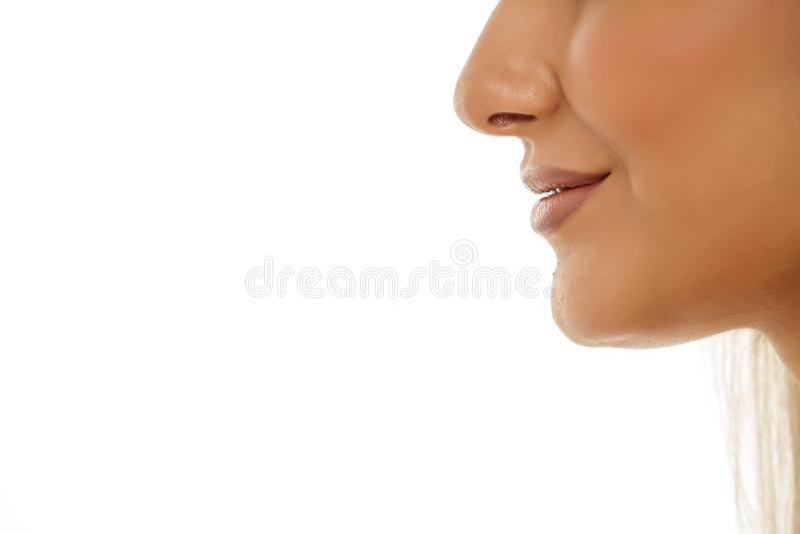 Kvinnlig näsa, kanter och haka arkivbild