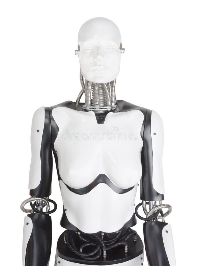 Kvinnlig robotskyltdockatorso royaltyfri foto