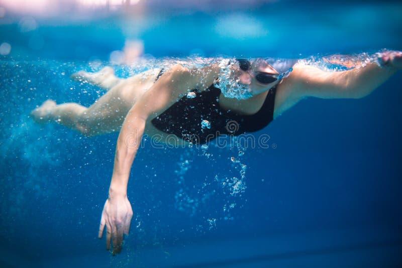 Kvinnlig simmare i en inomhus simbassäng arkivbilder