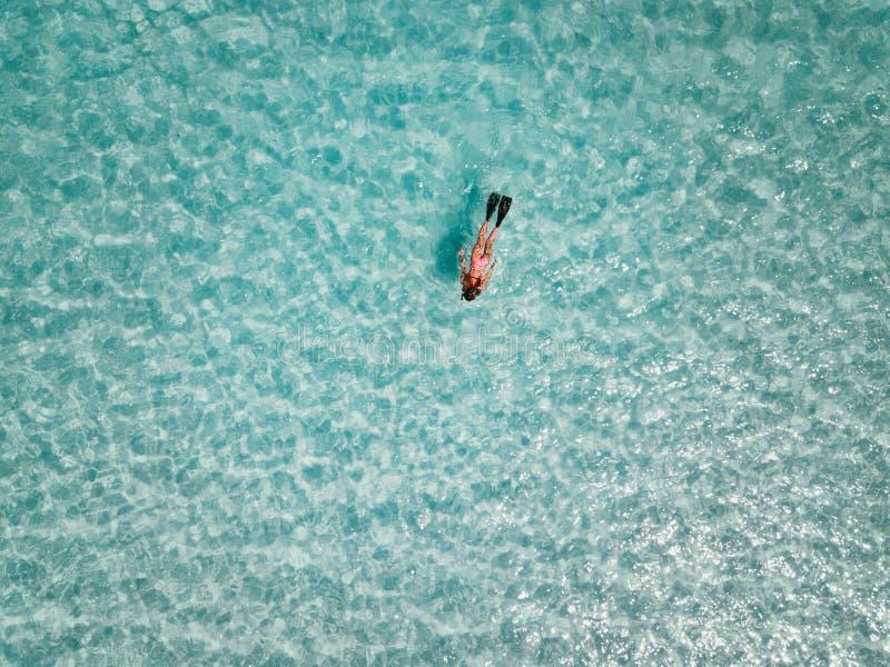 Kvinnlig snorkeler i turkosvatten exuma Bahamas arkivbilder