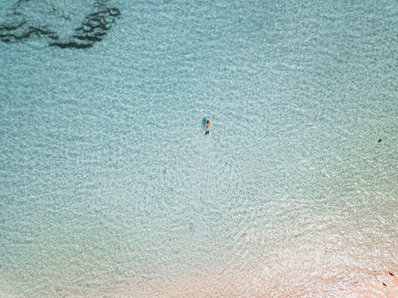 Kvinnlig snorkeler i turkosvatten exuma Bahamas fotografering för bildbyråer