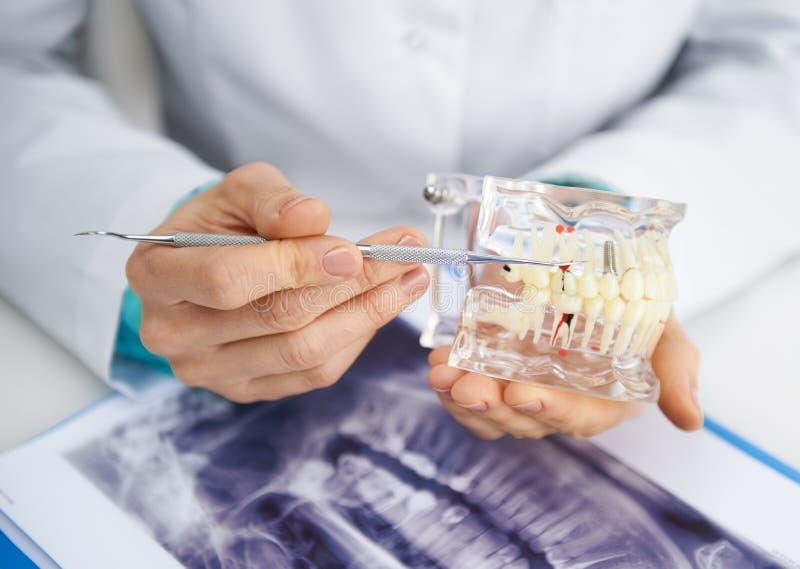 Kvinnlig tandläkare royaltyfri fotografi