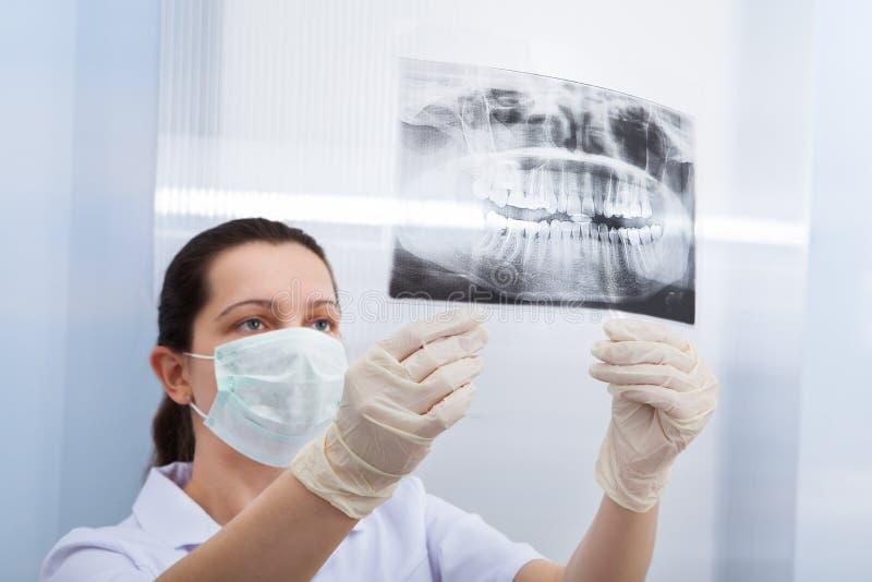 Kvinnlig tandläkare som ser den tand- röntgenstrålen royaltyfri bild