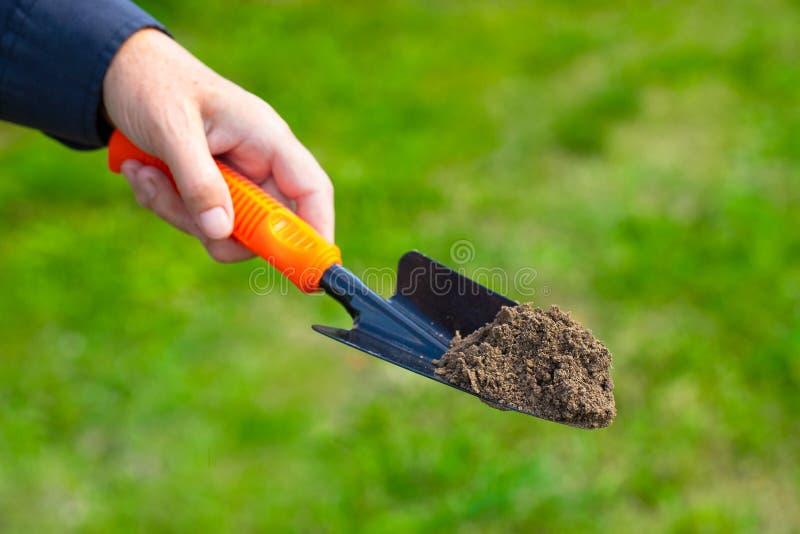 Kvinnlig trädgårdsmästare Hold Garden Trowel med jord i trädgård royaltyfri fotografi