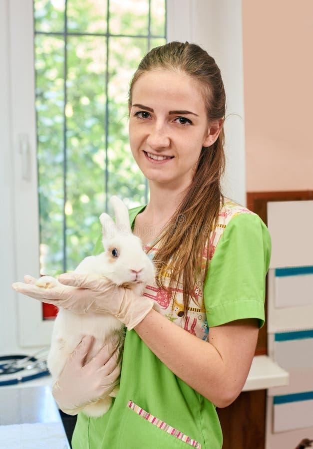 Kvinnlig veterinär med kaninståenden arkivfoton