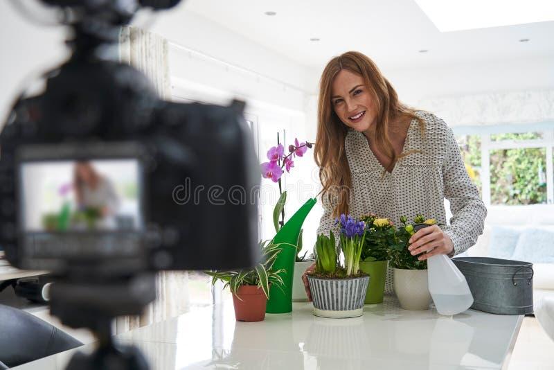 Kvinnlig Vlogger som g?r den sociala massmediavideoen om Houseplantomsorg f?r internet arkivfoto