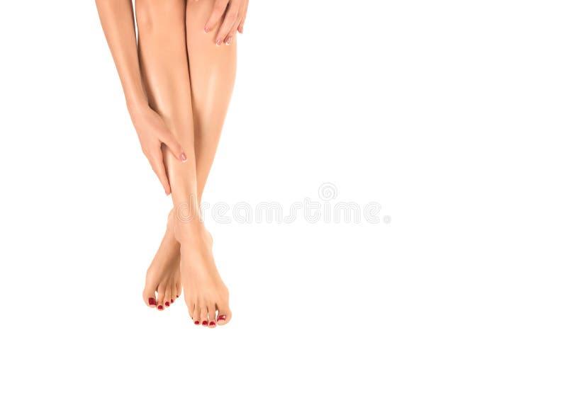 Kvinnliga barfota ben Kvinnahandlag hennes släta hud vid hennes hand, klassisk röd pedikyr som isoleras på vit royaltyfri fotografi