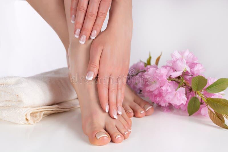Kvinnliga ben med kal fot och händer med fransk manikyr och pedikyr på den vita handduken i brunnsortsalong och dekorativ rosa bl royaltyfri fotografi