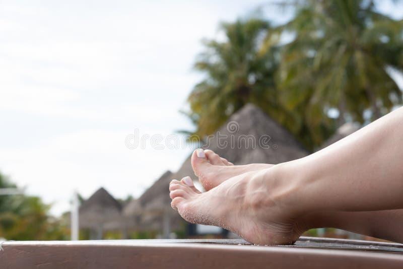 Kvinnliga ben solbadar på en dagdrivare Mörkt trä för Deckchair färg royaltyfri bild
