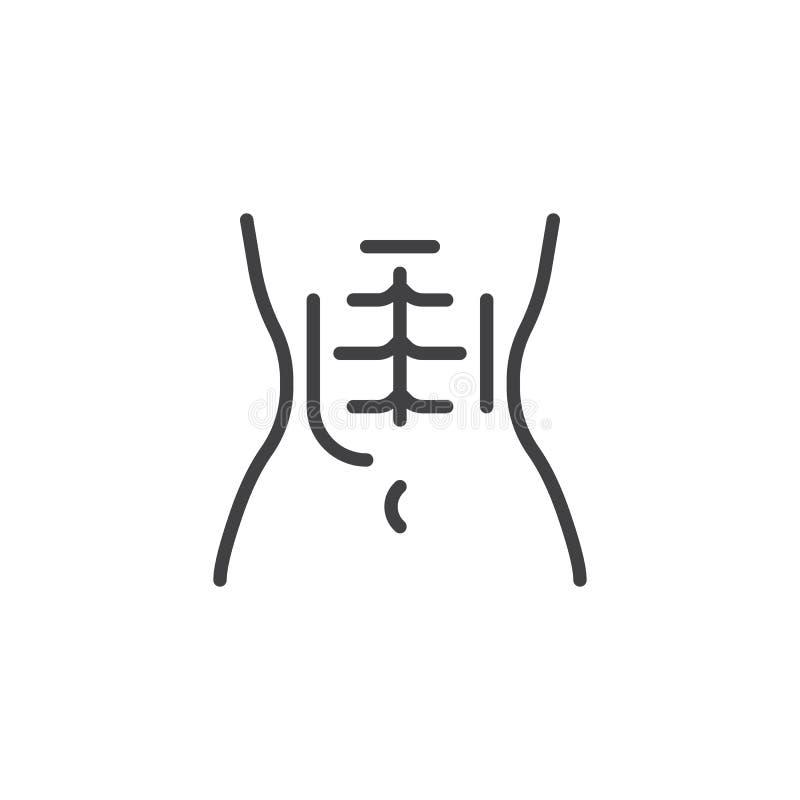 Kvinnliga buk- muskler fodrar symbolen royaltyfri illustrationer