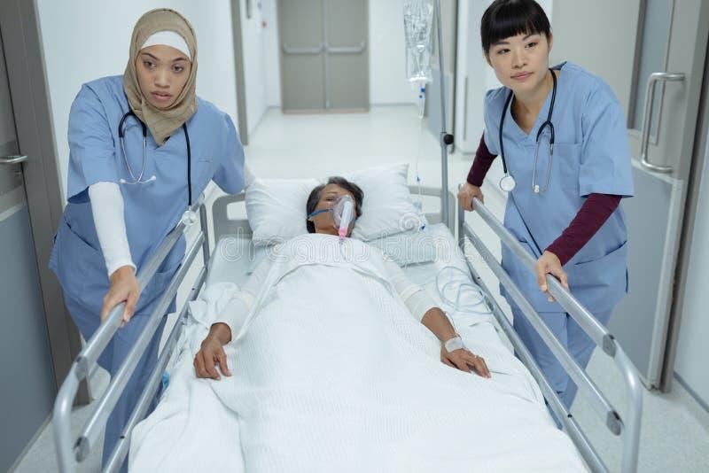 Kvinnliga doktorer som skjuter nöd- bårsäng i korridor royaltyfri fotografi