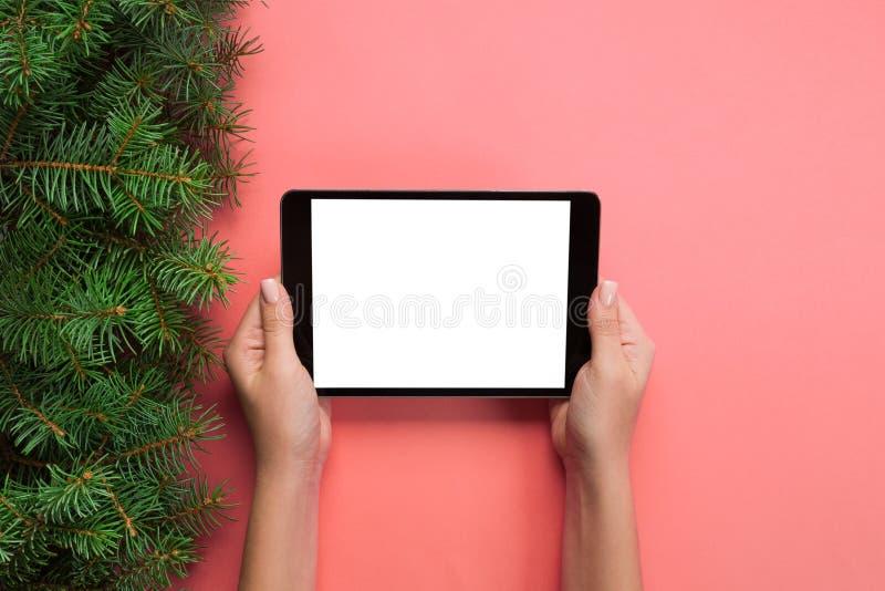 Kvinnliga händer med minnestavladatoren på rosa julbakgrund Bästa sikt för Xmas-trädfilial royaltyfria foton