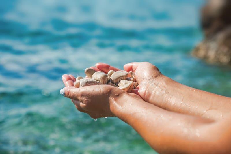Kvinnliga händer på bakgrunden av havet eller havet rymmer havsstenar royaltyfria bilder