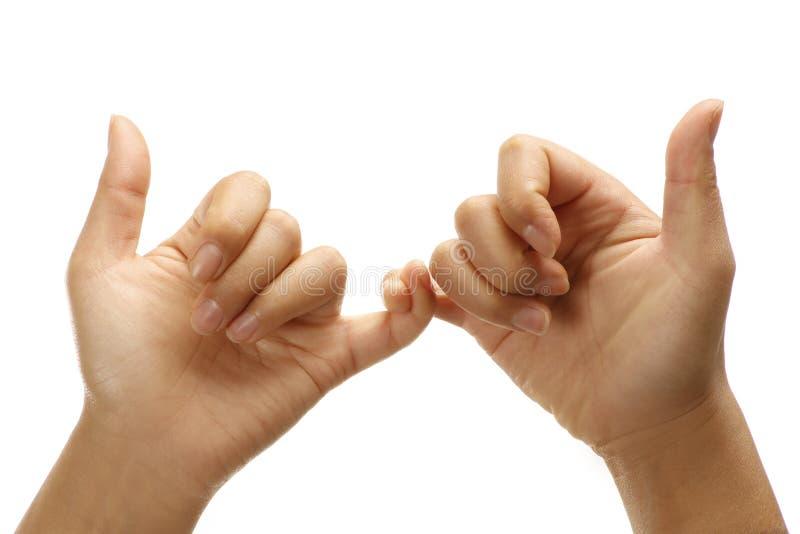 Kvinnliga händer som gör facklig vänlig positiv gest royaltyfria foton