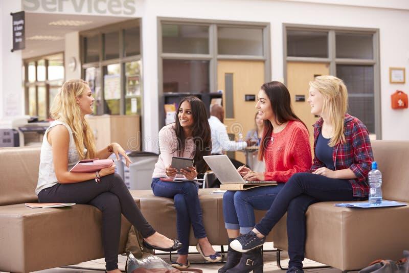 Kvinnliga högskolestudenter som tillsammans sitter och talar fotografering för bildbyråer