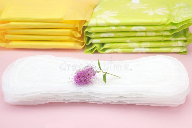 Kvinnliga hygienprodukter, rosa färger blommar på det menstruations- blocket Personlig omsorg, foto för kvinnahygienbefruktning M arkivfoton