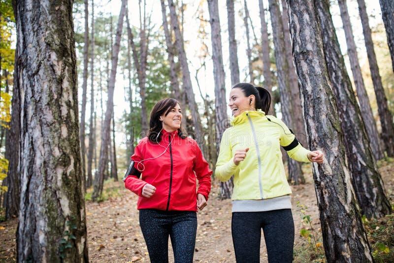 Kvinnliga löpare med hörlurar och smartphones som utomhus joggar i skog arkivbild