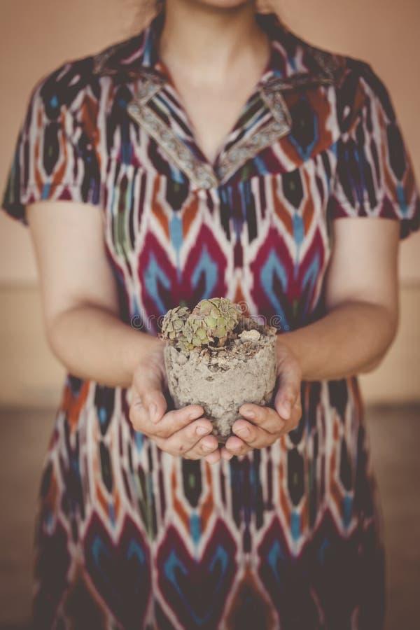 Kvinnliga plantera hem- växter Ungt mellersta - östlig kvinna som planterar blomman i krukan Arbeta i tr?dg?rden f?r flicka Husfr royaltyfria bilder
