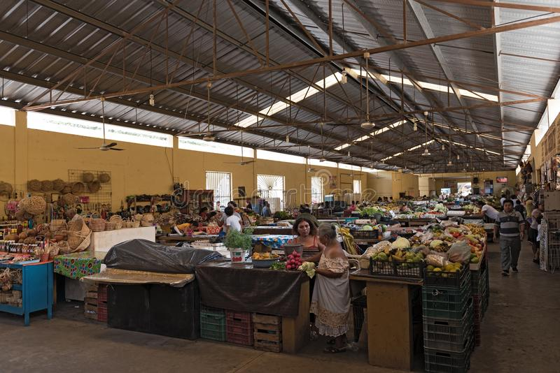 Kvinnliga säljare med kunder på den huvudsakliga marknaden, mercado som är kommunal i valladolid, Mexiko royaltyfria foton