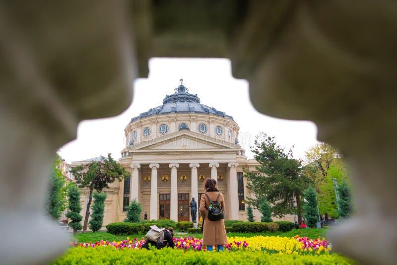 Kvinnliga turister som tar foto och beundrar den rumänska AthenaeumAteneul romaren i Bucharest royaltyfri bild