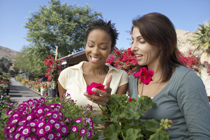 Kvinnliga vänner på botanisk trädgård royaltyfria foton