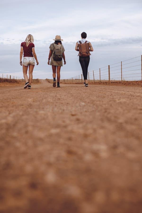 Kvinnliga vänner som går på landsvägen efter deras bilsammanbrott arkivfoton
