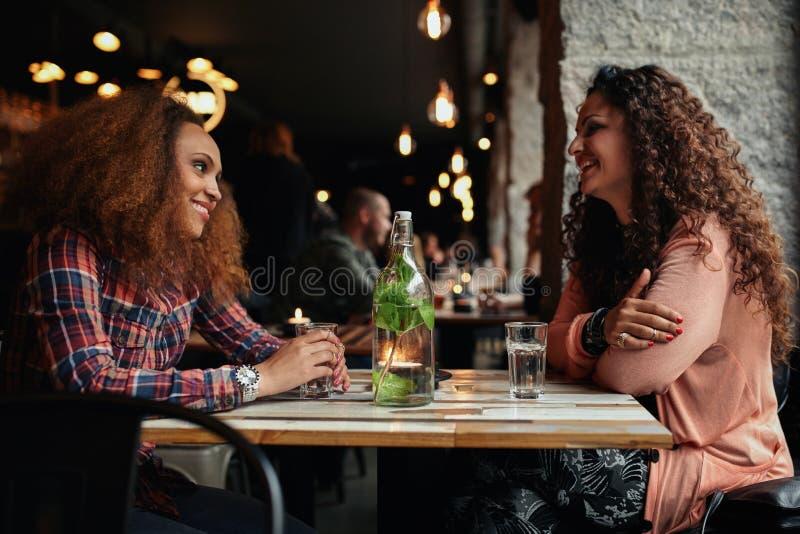 Kvinnliga vänner som möter i ett kafé arkivbild