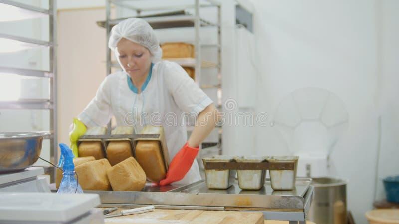 Kvinnlign bakar bröd på kommersiellt kök arkivfoto