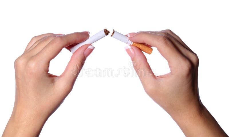 Kvinnlign räcker avbrott av en cigarett itu som isoleras på vit arkivbilder