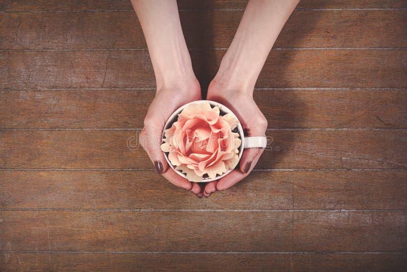 Kvinnlign räcker den hållande kopp te med steg arkivfoto
