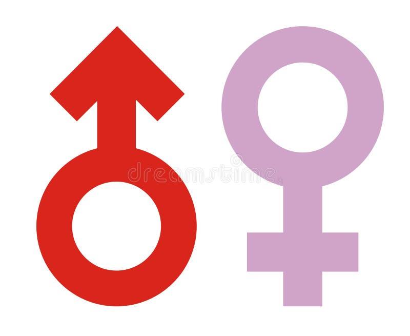 kvinnligsymbolsmanlign könsbestämmer stock illustrationer