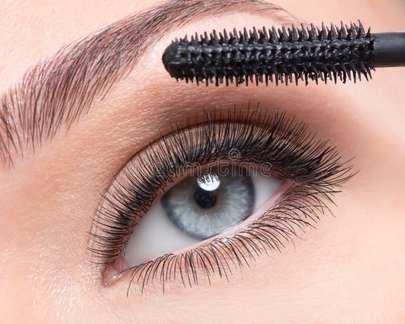 Kvinnligt öga för skönhet med långa falska ögonfrans royaltyfri bild