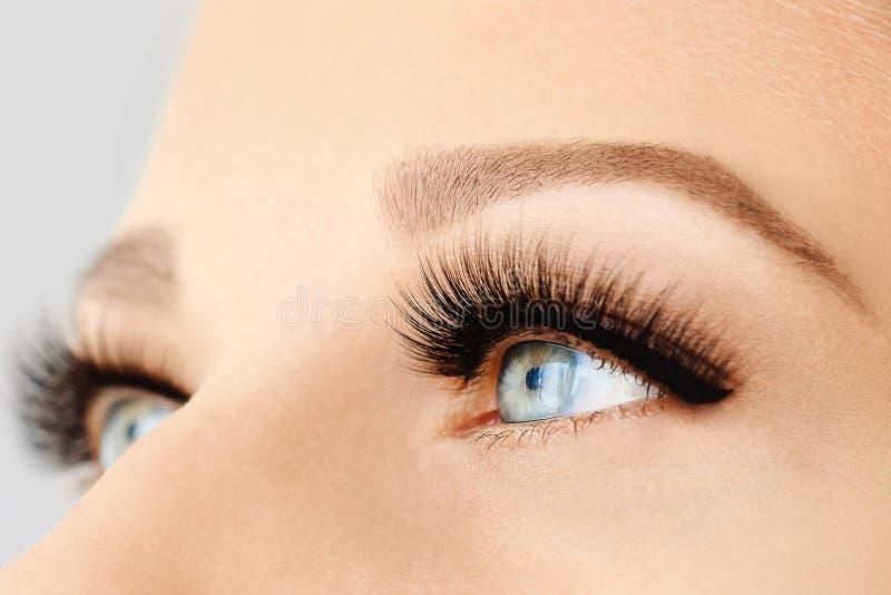 Kvinnligt öga med extrema långa falska ögonfrans och den svarta eyeliner Ögonfransförlängningar, smink, skönhetsmedel, skönhet royaltyfri bild