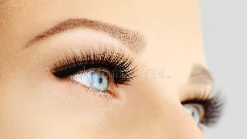 Kvinnligt öga med extrema långa falska ögonfrans och den svarta eyeliner Ögonfransförlängningar, smink, skönhetsmedel, skönhet fotografering för bildbyråer