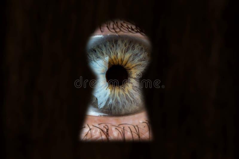 Kvinnligt blått öga som ser till och med nyckelhålet Begrepp av voyeurism, kuriositet, stalkeren, bevakning och säkerhet royaltyfria bilder