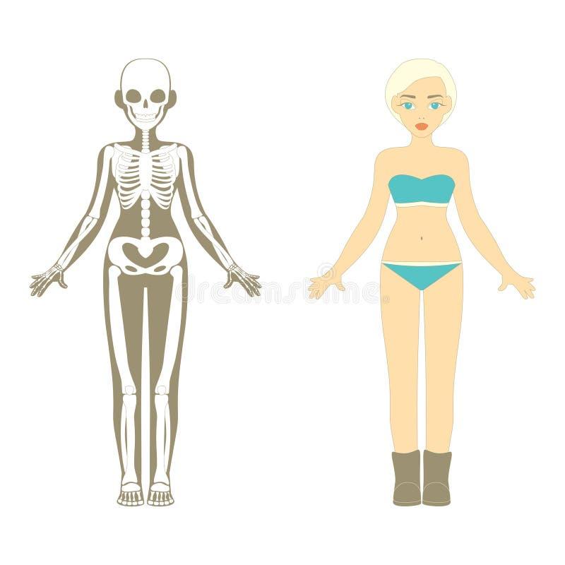 Ausgezeichnet Unmarkiertes Menschliches Skelett Galerie ...