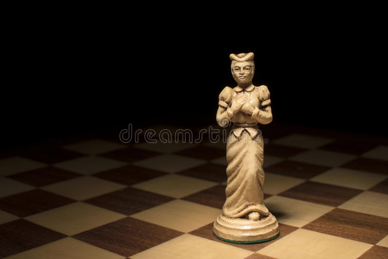 Kvinnligt ledarskap i företaget royaltyfri bild