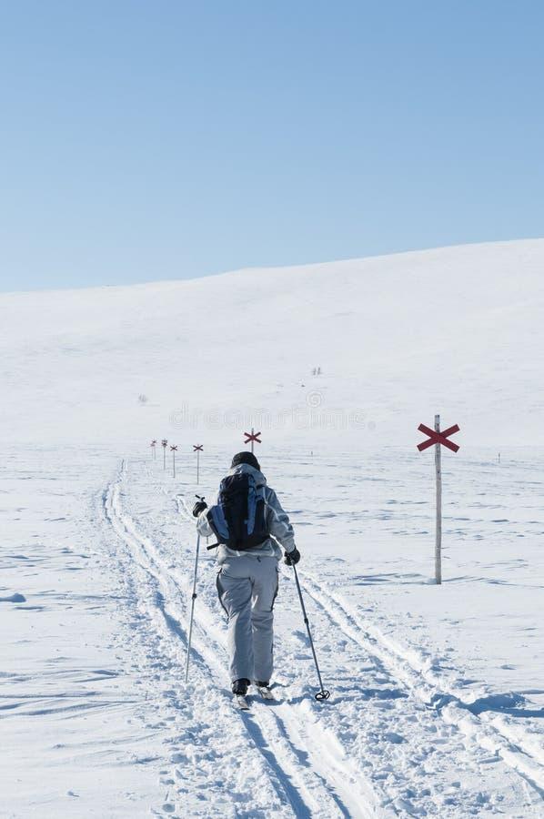 Kvinnligt turnera skieren bakifrån royaltyfria foton