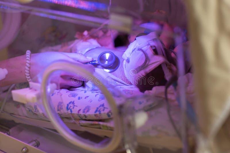 Kvinnligt undersöka för doktor som är nyfött, behandla som ett barn i kuvös Slut upp kvinnliga händer med en stetoskop royaltyfri fotografi