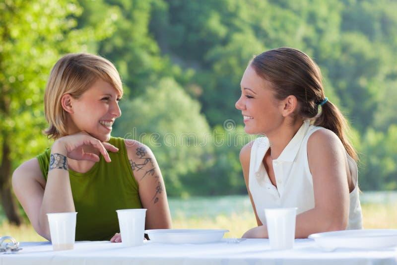 kvinnligvänner som picknicking arkivfoto