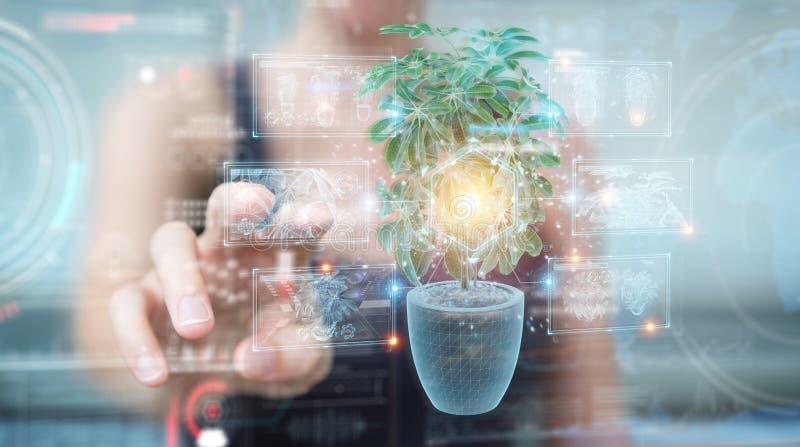 Kvinnobeläggning och beröring av holografisk projektion av en anläggning med digital analys 3D-rening royaltyfria bilder