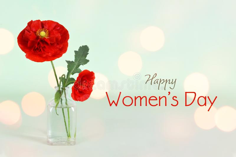 kvinnor för dag s Vallmoblommor i vasen arkivfoto