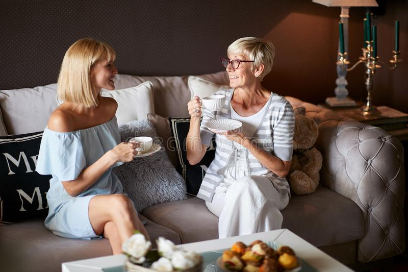 Kvinnor i angenämt samtal hemma royaltyfria bilder