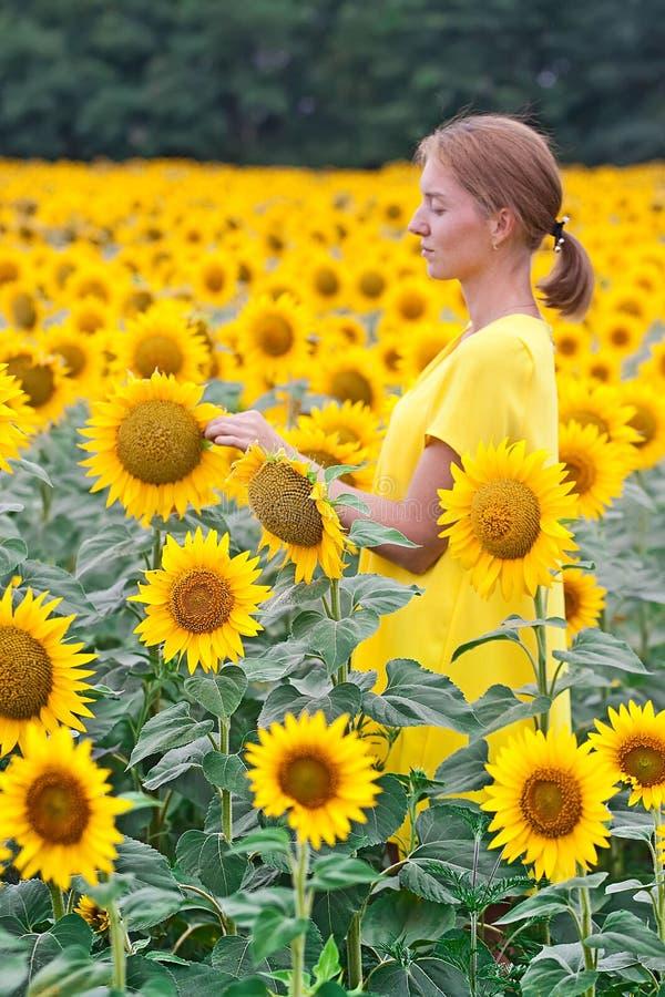 Kvinnor i gul klänning i solrosfält arkivbild