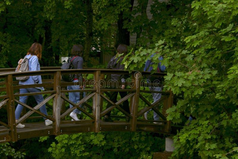 Kvinnor korsar en ström i parkerar på en träbro arkivfoto