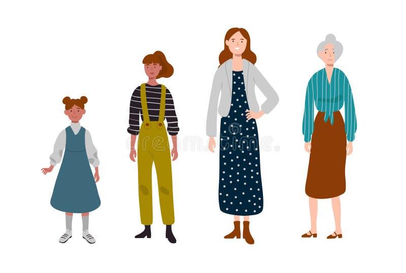 Kvinnor olika ?ldrar Utveckling av folk, familj, kvinnlig linje royaltyfri illustrationer