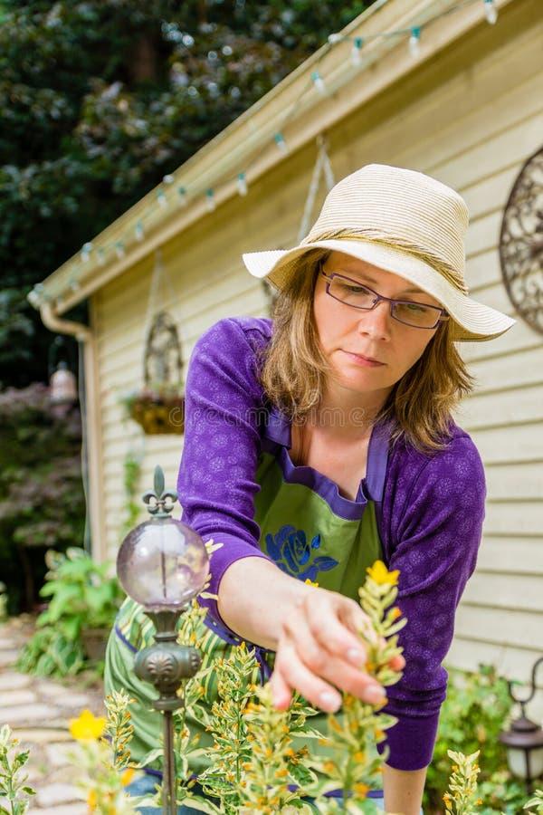 Kvinnor som arbeta i trädgården i trädgård fotografering för bildbyråer